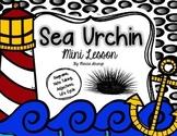 Science Mini Lesson: Sea Urchins