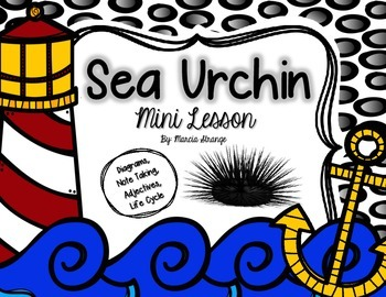Science Mini Lesson: Sea Urchins