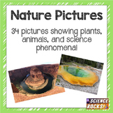 Science & Nature Photographs