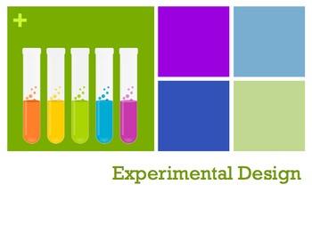Science Notebook Lab Basics Appendix