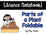 {Science Notebook} - Parts of a Plant Foldable