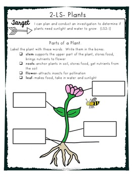 Science Notebook Printables and Activities Superpack- Second Grade