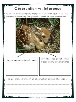 Science Notebook Printables and Activities Superpack- Third Grade