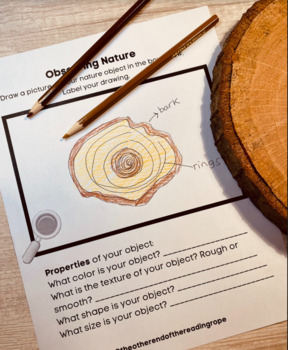 Science Notebook Sheets for K-2:  Nature