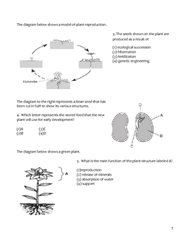 High School Biology Notes - Plant Structure and Function