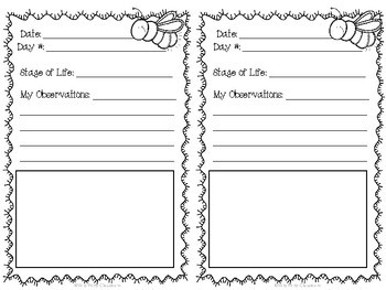 Science Observation Journals: Plants, Butterflies, Bugs, and Ladybugs