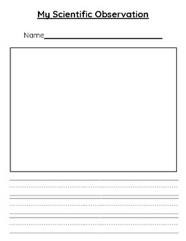 Science Observation Writing Drawing Worksheet