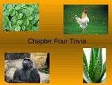 Science PPT: Scott Foresman 3rd Grade Chapter 4
