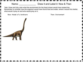 Science Packet: Fossils- Evidence of the past