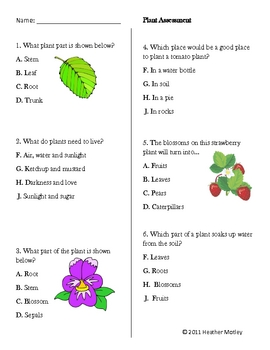 Science: Plant Assessment and Study Guide