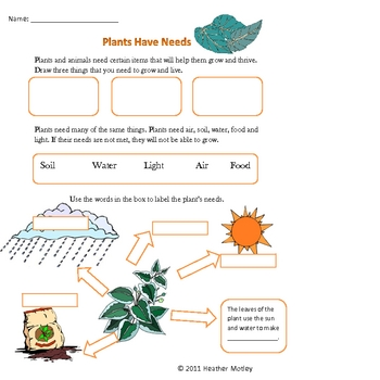 Science: Plant Needs Bundle