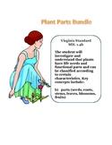Science: Plant Parts Bundle