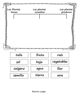 Science Plant Unit in Spanish