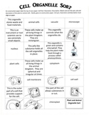 Science: Plant and Animal Organelle Vocabulary Sort