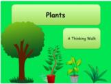 Science Plants Lesson Plans & Resources Bundle