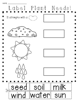 Science: Plants and Seeds {Let's Label It!} Cut and Paste Activities