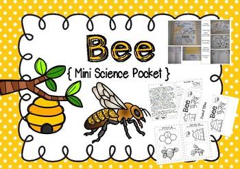 Science Pocket Bee