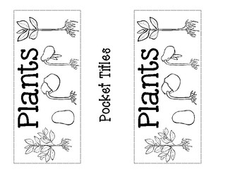 Plants - Science Pocket