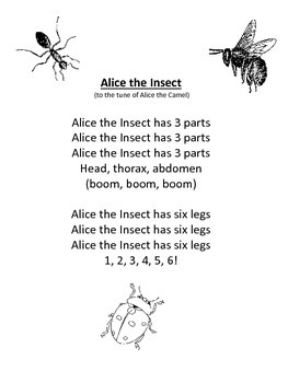 Science Poems and Songs: Characteristics of Insects