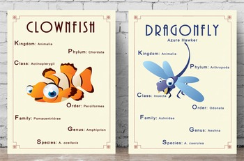 Science Poster - Animal Classification