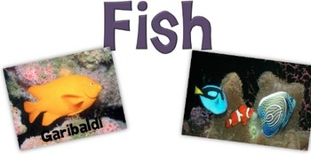 Science Poster-Fish