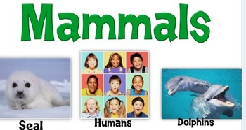 Science Poster-Mammals