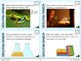 Science Practices & Scientific Method Task Cards (Differentiated and Tiered)