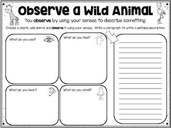 Science Process Skills Lab Pack - Using Plastic Wild Animals