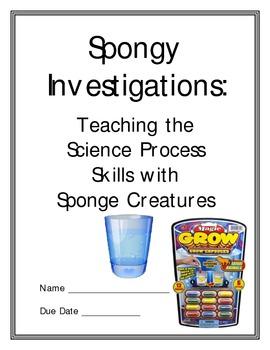 Science Process Skills Using Sponge Creatures