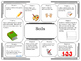 Science Project Choice Board: Soils and Soil Profiles- 10 Projects