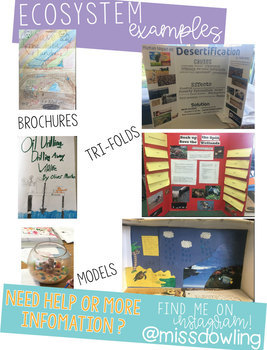Science Project and Problem Based Learning Bundle