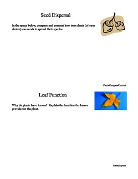 Science Prompts