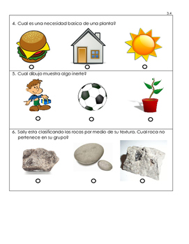 Science Quiz - Spanish