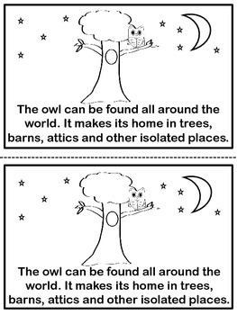 Science Reader - Owls