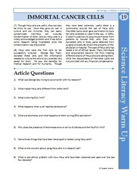 worksheet. Cell Division And Mitosis Worksheet Answers. Grass ...