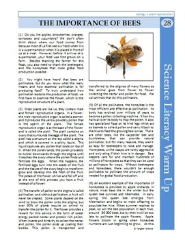 Science Literacy Reading #28 - The Importance of Bees - Science Sub Plan