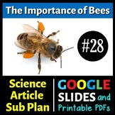 Science Reading #28 - The Importance of Bees - Sub Plan (Google Slides & PDFs)