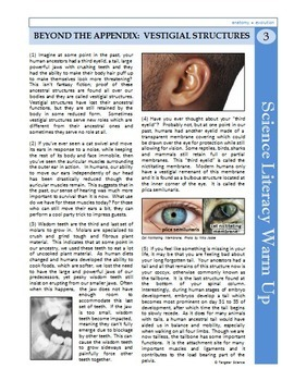 Science Literacy Reading #3- Appendix and Vestigial Structures- Science Sub Plan
