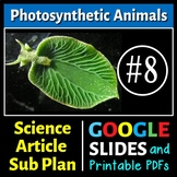 Science Literacy Reading #8 - Photosynthetic Animals - Science Sub Plan