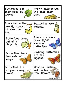 Science Reading Game:  Butterflies