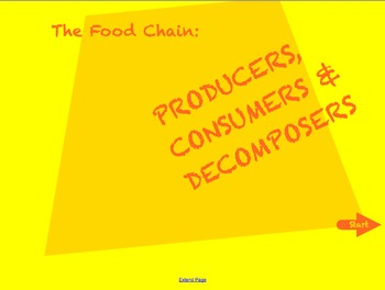 Science - Review the Food Chain