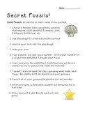 Science: Rocks and Minerals - Mold Fossil Activity