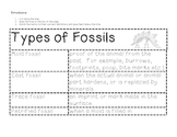 Science: Rocks and Minerals - Types of Fossils
