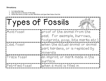 Types Of Fossils Worksheets & Teaching Resources | TpT