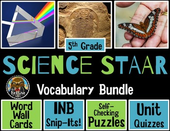 Science STAAR Vocabulary-Word Wall, Puzzles, Interactive Notebook Pages, Quizzes