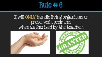 Science Safety Rules PowerPoint Presentation