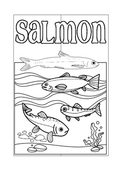 Science Salmon Interactive Notebook Lapbook