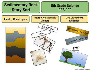 Science: Sedimentary Rock/Fossils Digital Activity (5.7A, 5.7D)