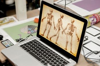 SCIENCE: Skeleton and Bones - Editable PowerPoint *FREEBIE*