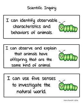 Science Standards Kindergarten